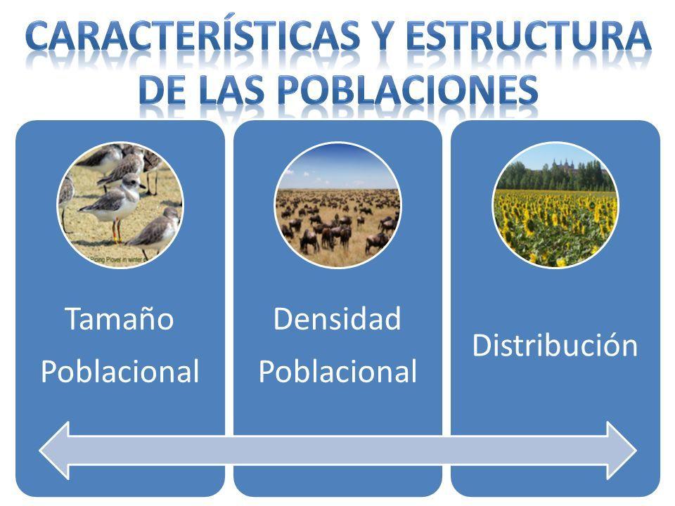 Institución Educativa Colegio Once De Noviembre Ciencias