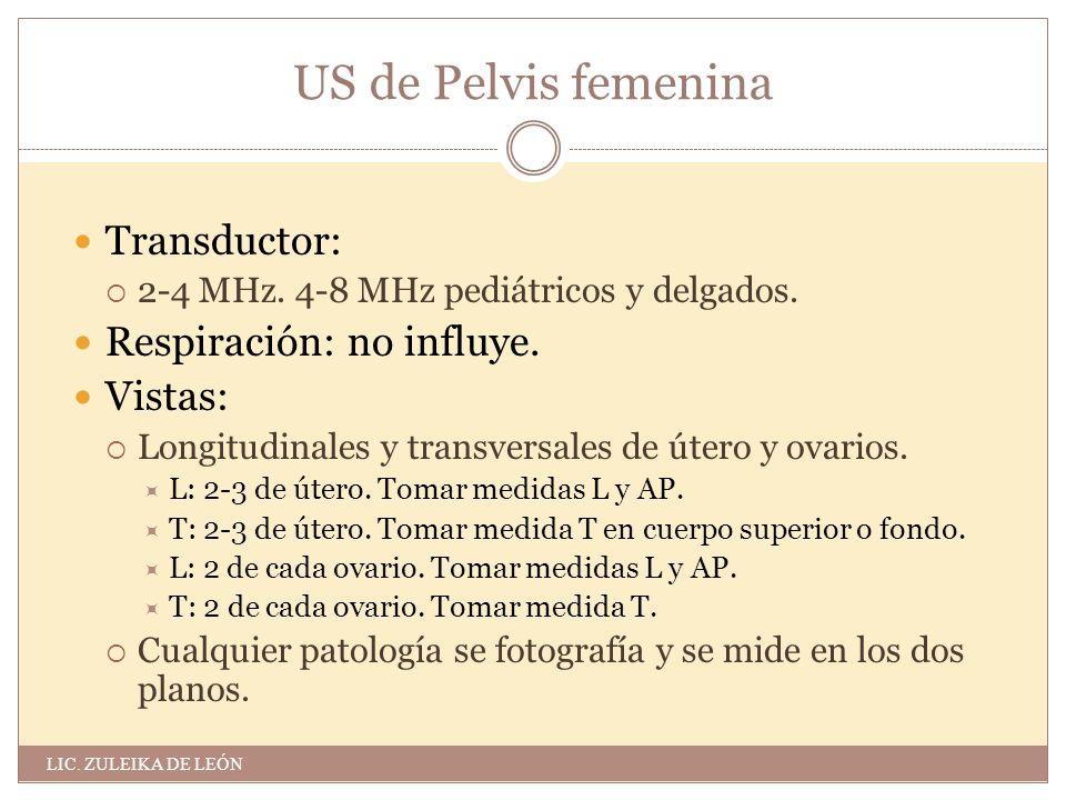 US de Pelvis femenina Anatomía:  Útero: Suele estar en anteversión ...