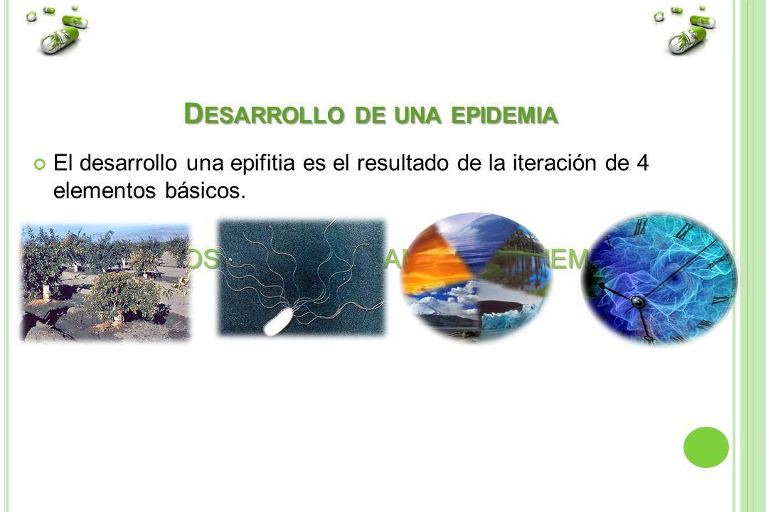 CUESTIONARIO DE PREGUNTAS FITOPATOLOGIA AGRICOLAS ALUMNO VICTOR RAUL ...
