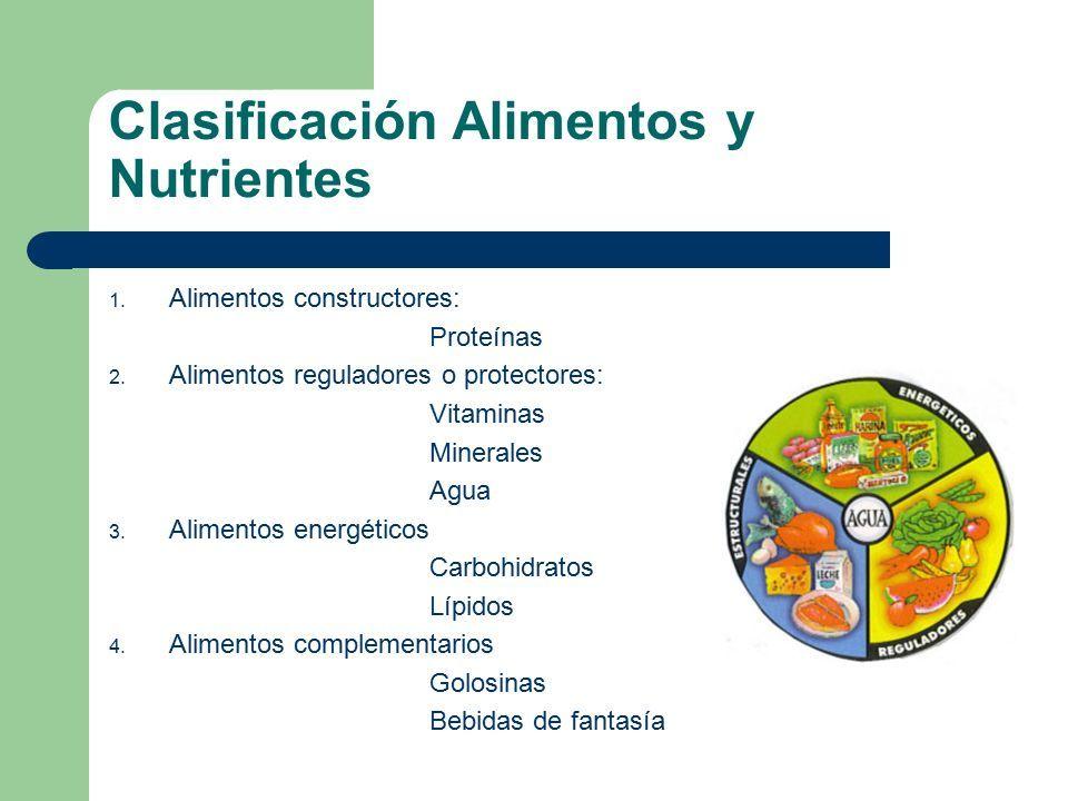Clasificacion de vitaminas proteinas y minerales
