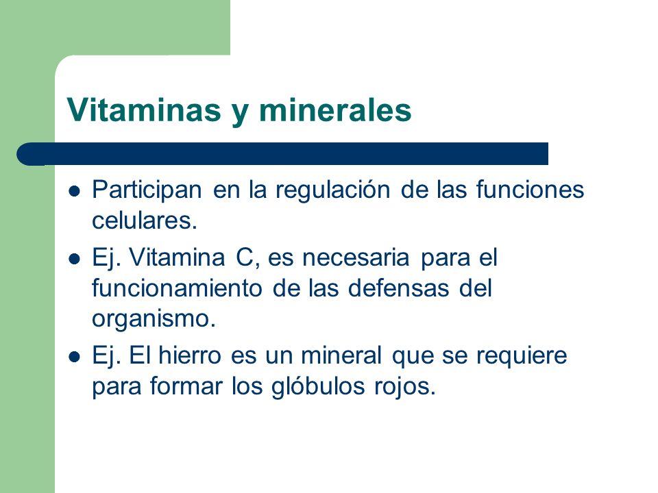 funcion de minerales y vitaminas