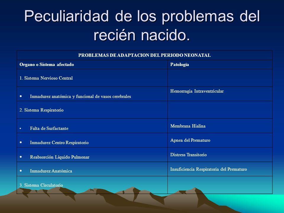 RECIEN NACIDO, CONCEPTO, RIESGO Y CLASIFICACION DR. ANGEL FEDERICO ...