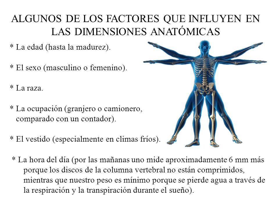 ANTROPOMETRÍA. ALGUNOS DE LOS FACTORES QUE INFLUYEN EN LAS ...