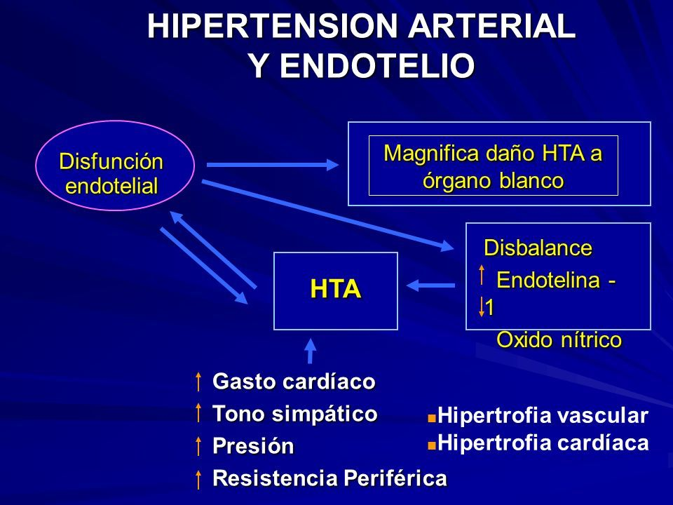 Hipertensión daño endotelial
