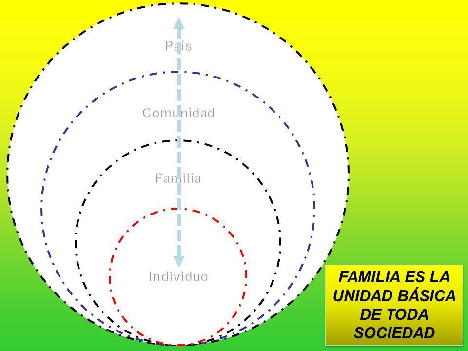 La Familia Y Los Sistemas Estructura Y Dinámica Familiar Dr