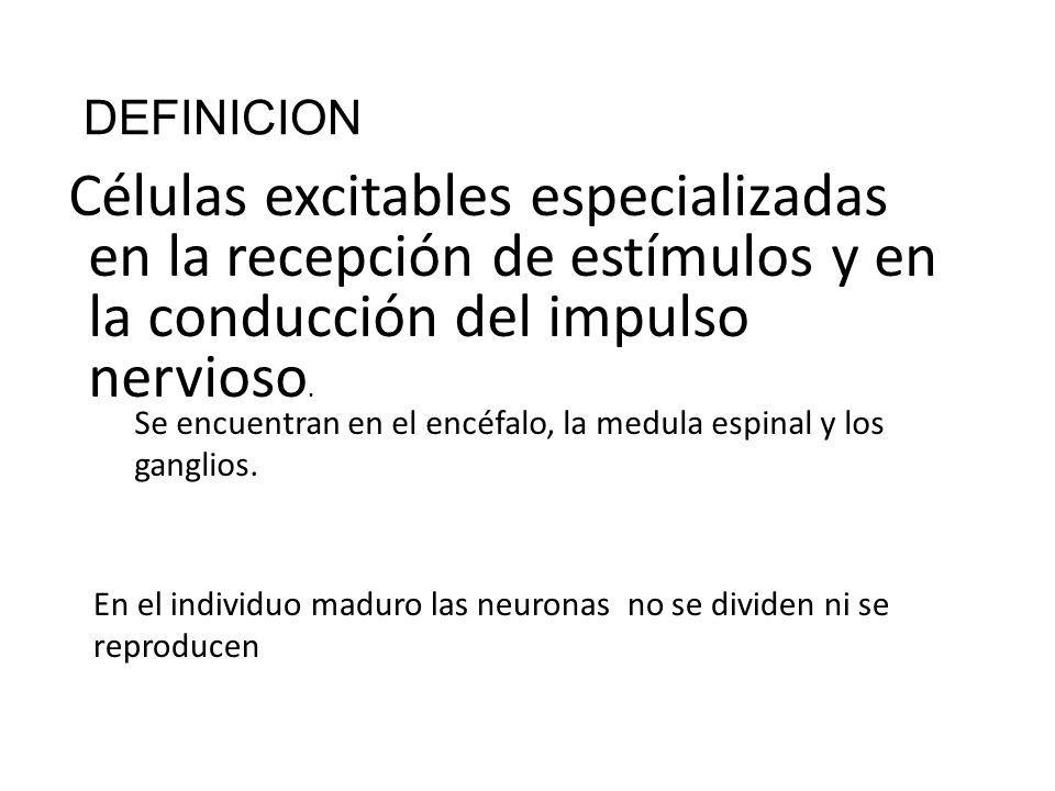 DEFINICION Células excitables especializadas en la recepción de ...