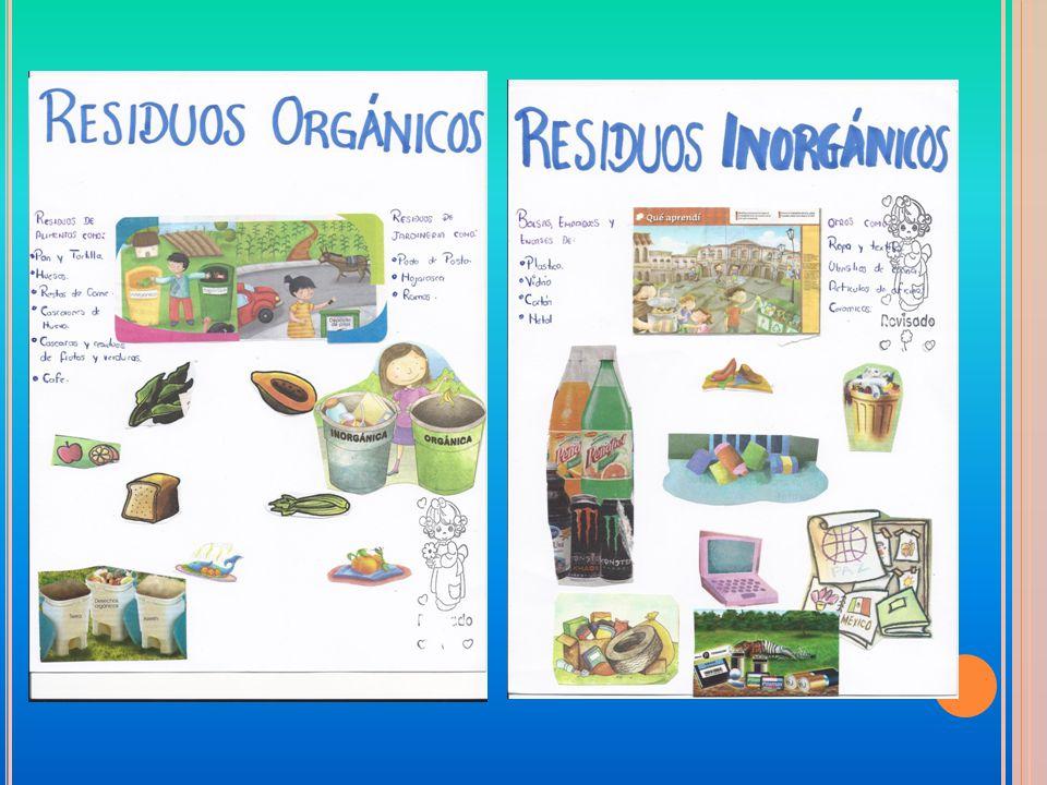 Diseña El Cambio Jardin De Niños Marianne Frostig Tm Cct