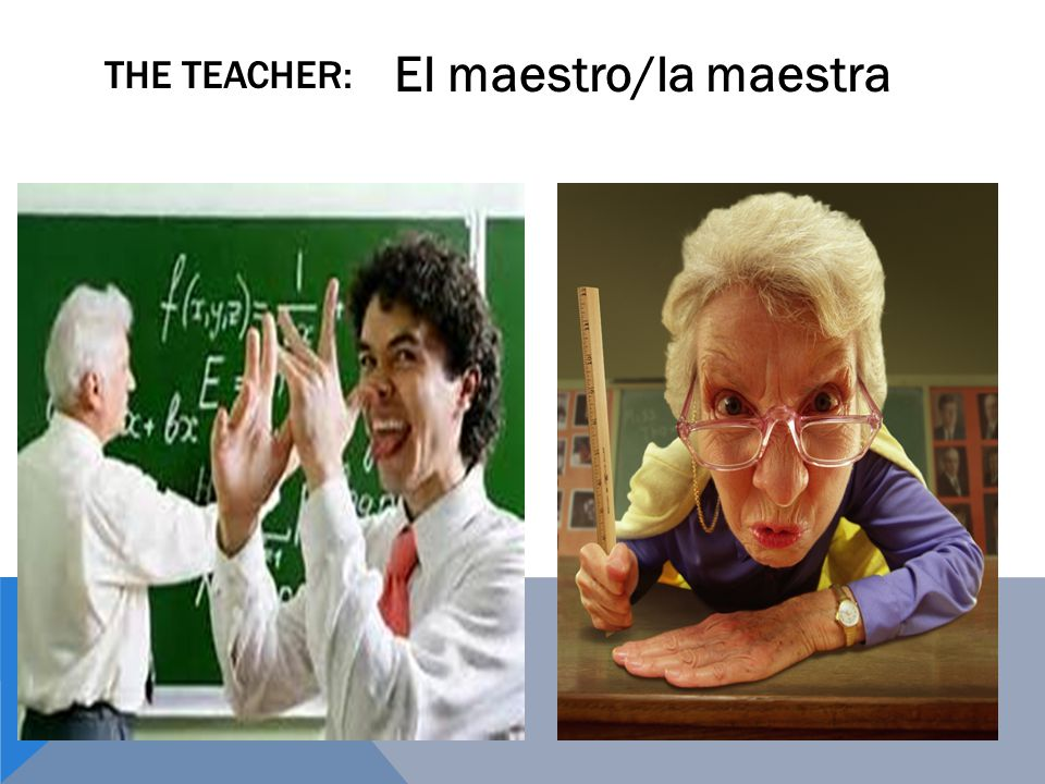 THE TEACHER: El maestro/la maestra
