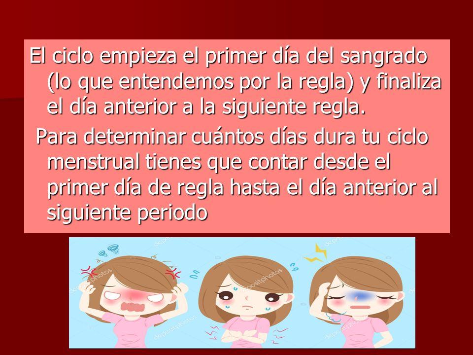 CICLO MENSTRUAL. DEFINICIÓN La menstruación es parte del ciclo ...