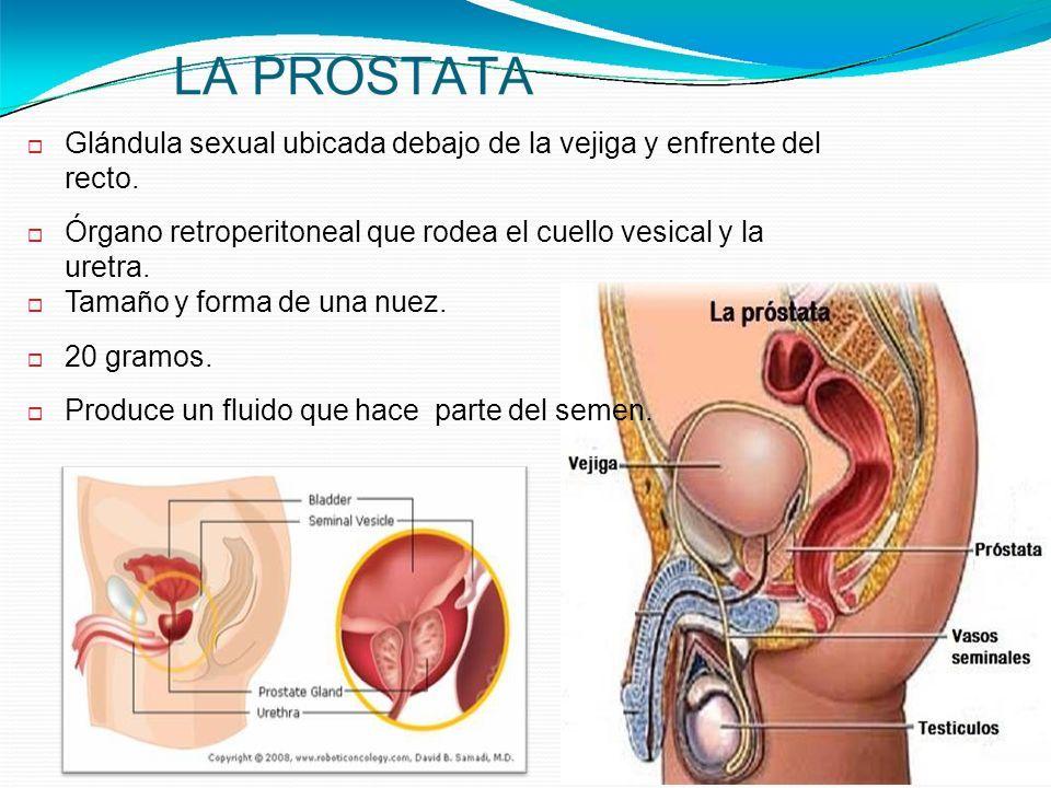 manejo de enfermería para pacientes con cáncer de próstata