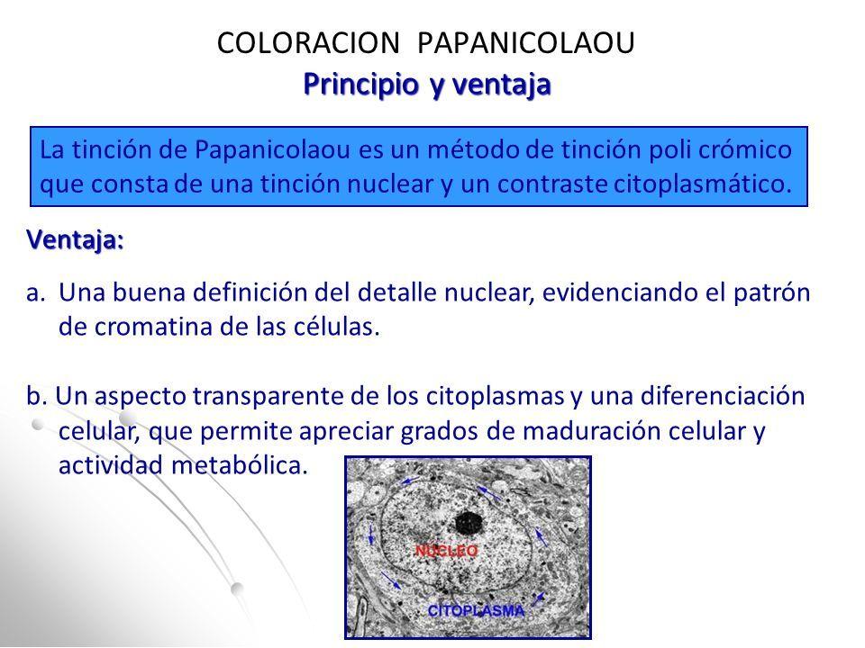 HMC COLORACIÓN DE PAPANICOLAOU Y CITOLOGIA CÉRVICO VAGINAL CITOLOGIA ...