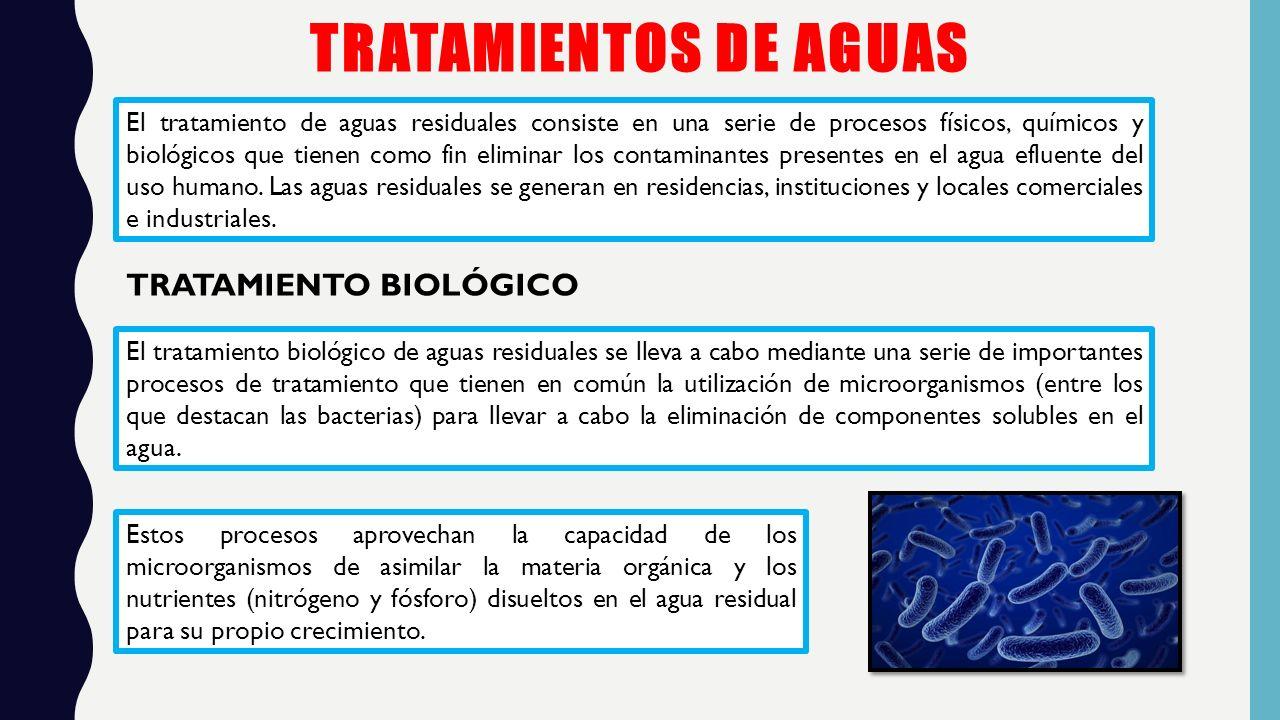 Tratamiento Secundario Biológico Almeida Tatiana Coral Kevin Jumbo Rossana Loaiza Stefany Universidad Tecnológica Equinoccial Sede Santo Domingo Ppt Descargar