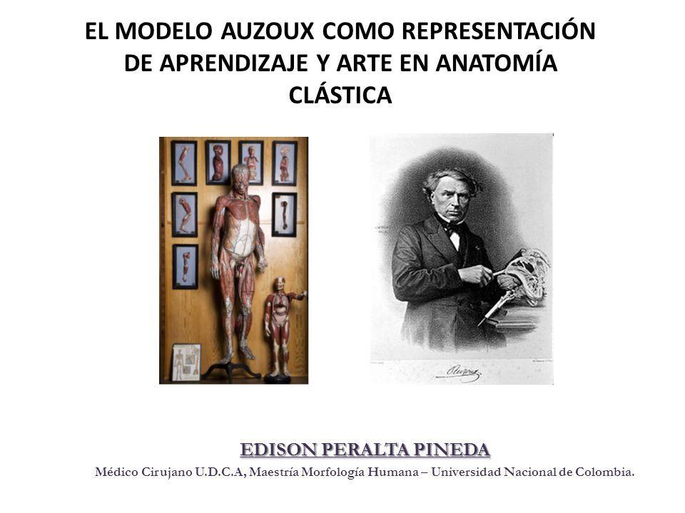 EL MODELO AUZOUX COMO REPRESENTACIÓN DE APRENDIZAJE Y ARTE EN ...