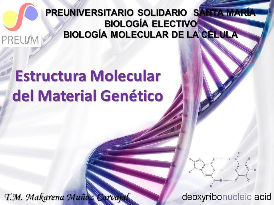 Estructura Molecular Del Material Genético Preuniversitario