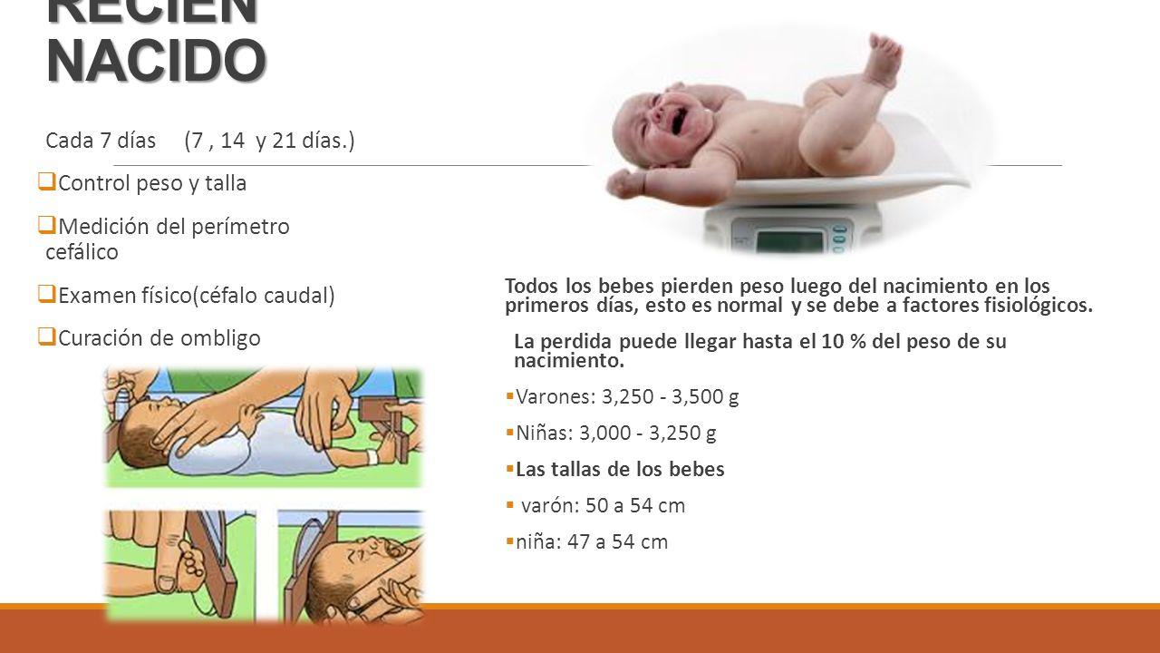 perdida de peso en los primeros dias del recien nacido
