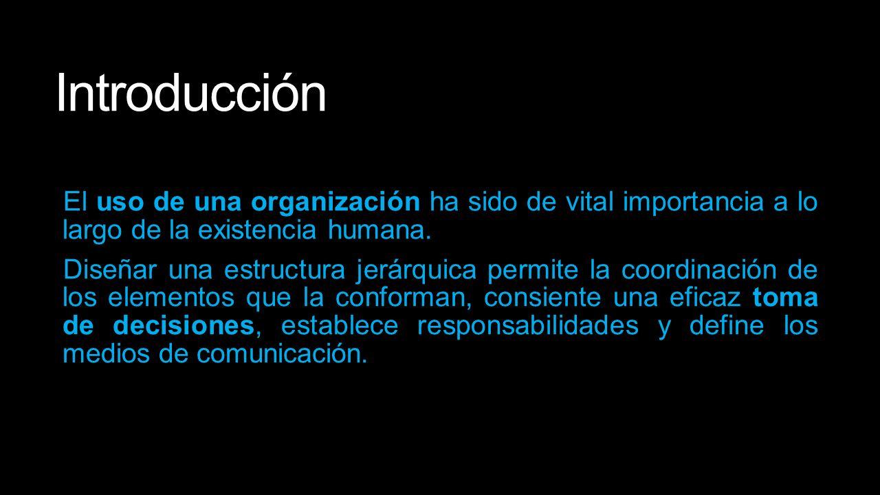 Organización Introducción El Uso De Una Organización Ha